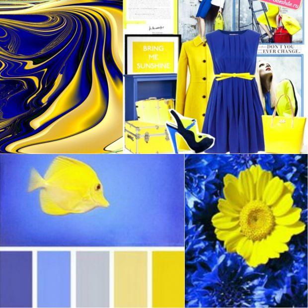 Сочетания темно синего цвета с другими цветами