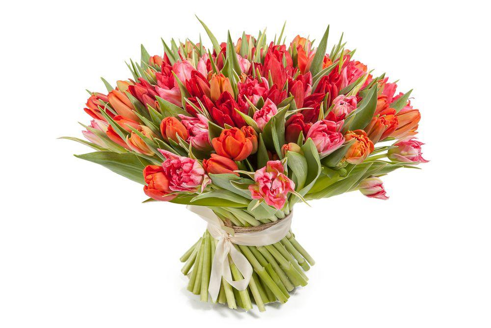 подарок на 8 марта, поздравление, поздравления, поздравляю