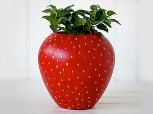 15 Simple Ideas How to Transform a Flower Pot. Livemaster - handmade