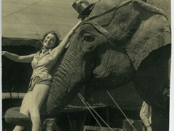 ...Огни старого цирка... | Ярмарка Мастеров - ручная работа, handmade