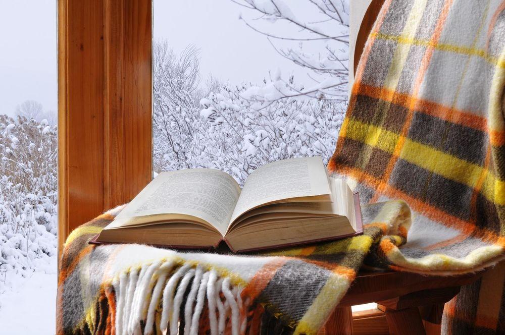 развратные кошечки домашний уют и книга смотреть