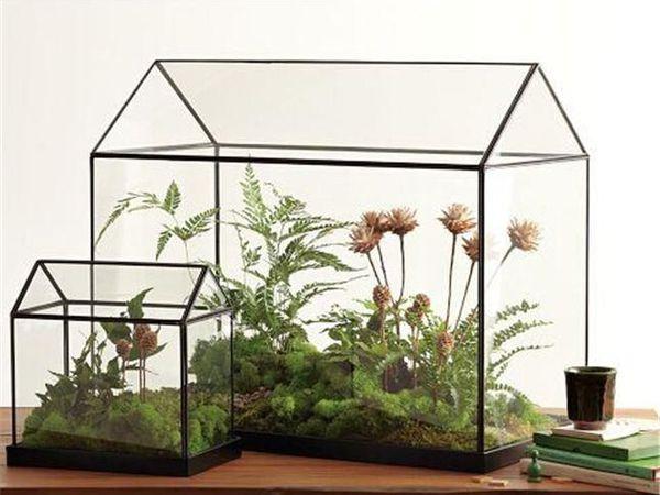 Флорариум в технике Тиффани: хрустальный домик для цветов | Ярмарка Мастеров - ручная работа, handmade