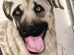 И снова про моих подопечных собак... Ярмарка Мастеров - ручная работа, handmade.