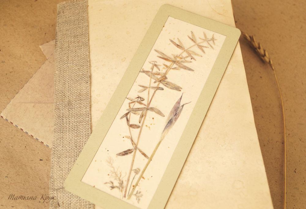 гербарий, цветочное украшение, картины из сухоцветов