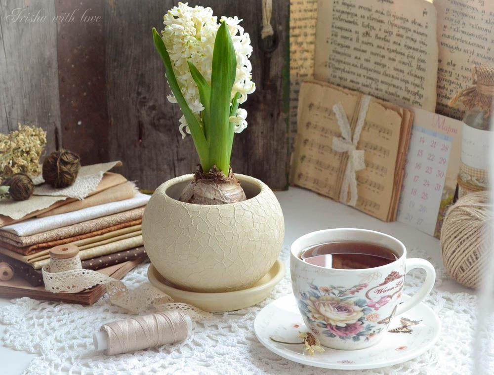 весна, первый день весны, гиацинт, ириша колпакова