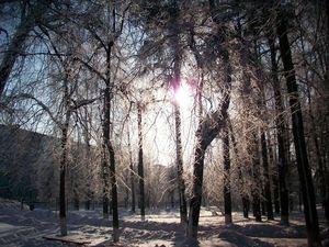Сказочно красивая зима!!. Ярмарка Мастеров - ручная работа, handmade.