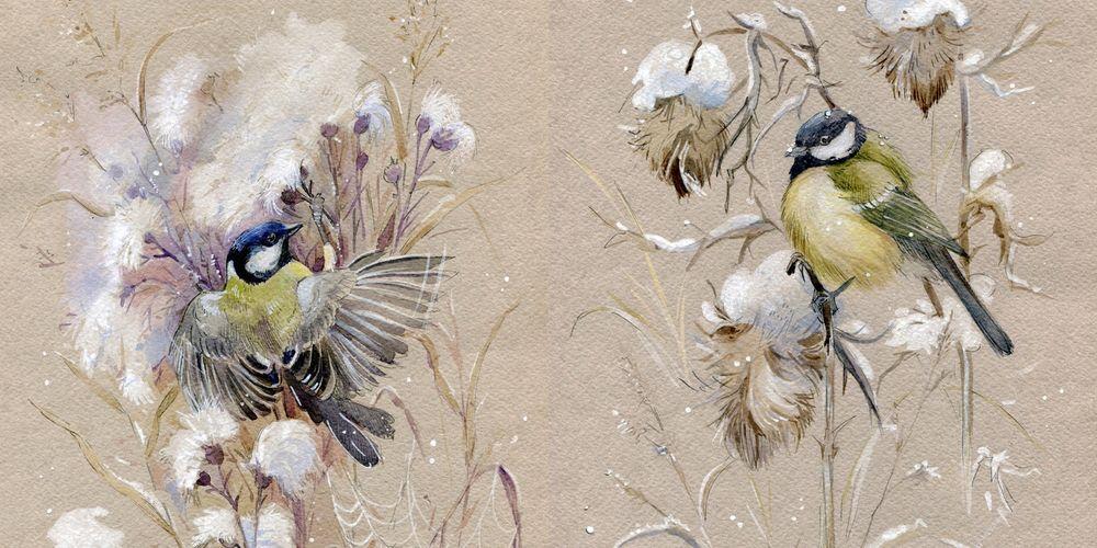 рисуем птичек, иней, синичка