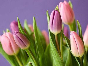 Весна, как ты прекрасна!. Ярмарка Мастеров - ручная работа, handmade.
