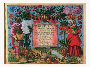 Путешествие в Средневековье. Ароматы волшебных трав и цветов. Ярмарка Мастеров - ручная работа, handmade.