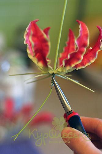 Глориоза мастер-класс по лепке цветка из полимерной глины, холодный фарфор