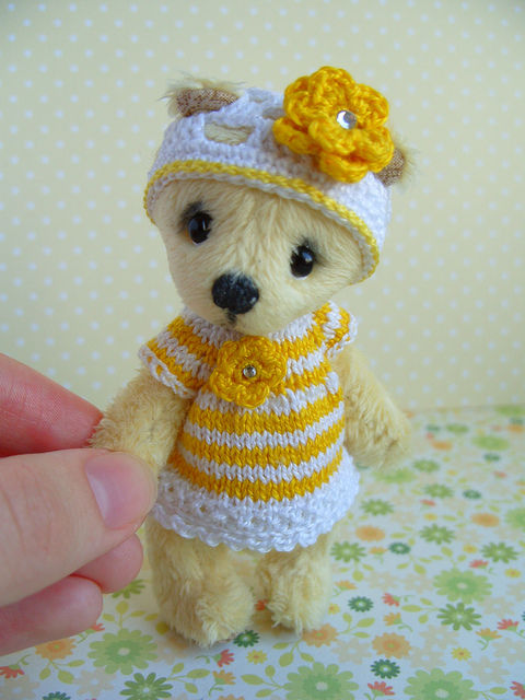 Yellow Teddy bear Honey