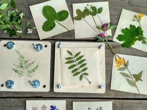Секреты идеального гербария. Ярмарка Мастеров - ручная работа, handmade.