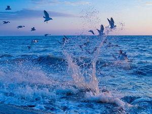 Глубокое синее море.... Ярмарка Мастеров - ручная работа, handmade.