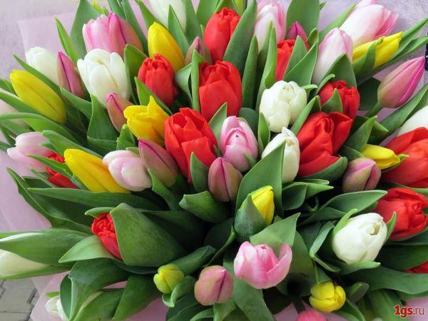 Поздравляю всех с 8 марта! | Ярмарка Мастеров - ручная работа, handmade