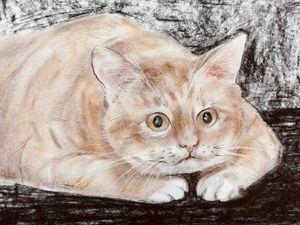 День кошки в магазине. Ярмарка Мастеров - ручная работа, handmade.