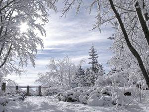 Фотосессия в -30! Зимний фотофон.   Ярмарка Мастеров - ручная работа, handmade