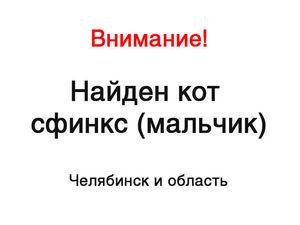 Челябинск и область! Внимание, найден сфинкс!. Ярмарка Мастеров - ручная работа, handmade.