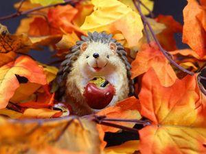 Осень — время запасов). Ярмарка Мастеров - ручная работа, handmade.