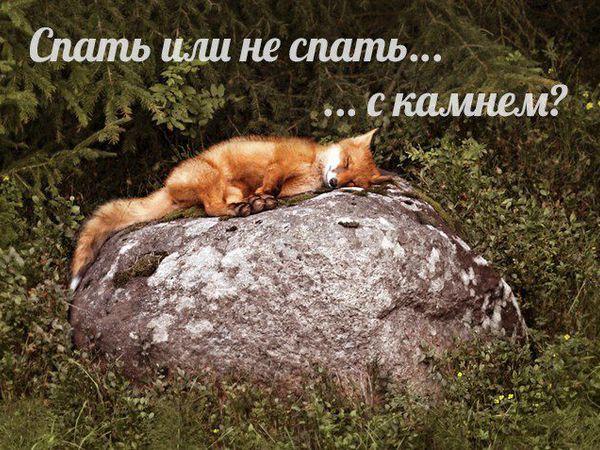 Про сон с камнями.   Ярмарка Мастеров - ручная работа, handmade