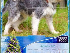 Календарь с собаками Teddy Food. Декабрь. Ярмарка Мастеров - ручная работа, handmade.