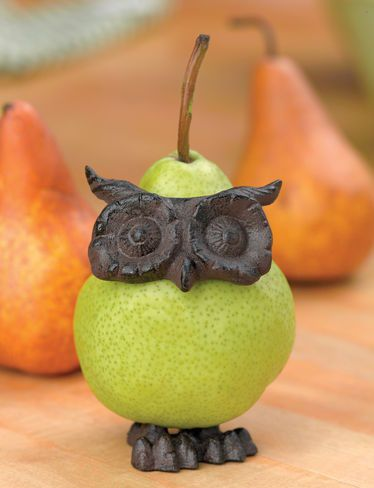Owl Fruit Decorators - I sometimes worry that my pears don't sufficient convey wisdom. Only $8.88 for three!