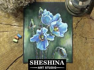 Видеоурок: рисуем голубые гималайские маки сухой пастелью. Ярмарка Мастеров - ручная работа, handmade.