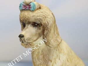 Раритетище Собака пудель Radnor Англия 55. Ярмарка Мастеров - ручная работа, handmade.