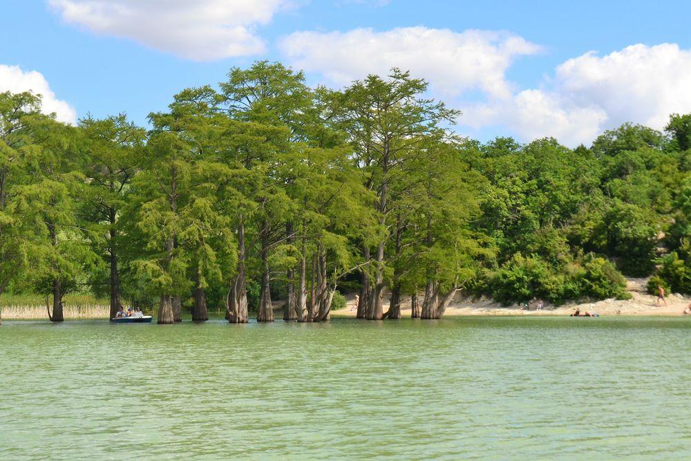 озеро, юг