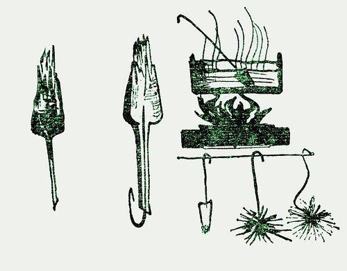 скелетизация листьев, сухие растения