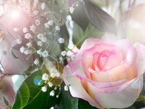 Волшебная Марокканская роза. Ярмарка Мастеров - ручная работа, handmade.