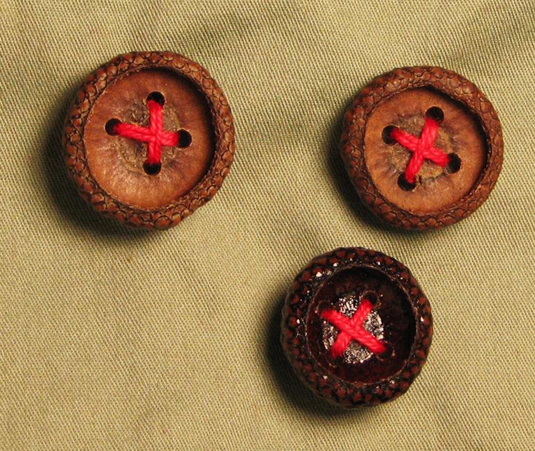 пуговица, acorn cupule button, материалы для творчества