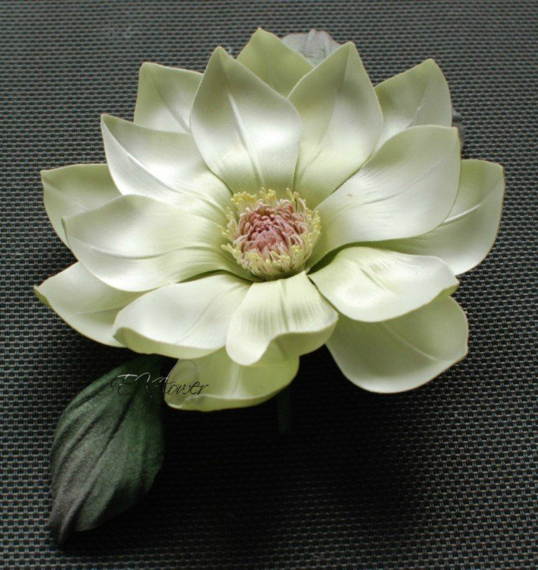 цветоделие, обучение цветы