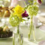 spring-flowers-new-ideas-narcissus8.jpg