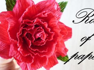 Делаем розу из гофрированной бумаги: видеоурок. Ярмарка Мастеров - ручная работа, handmade.
