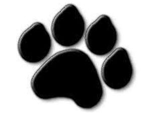 Не Пропустите Blackfriday with Blackcat!!!-75% | Ярмарка Мастеров - ручная работа, handmade
