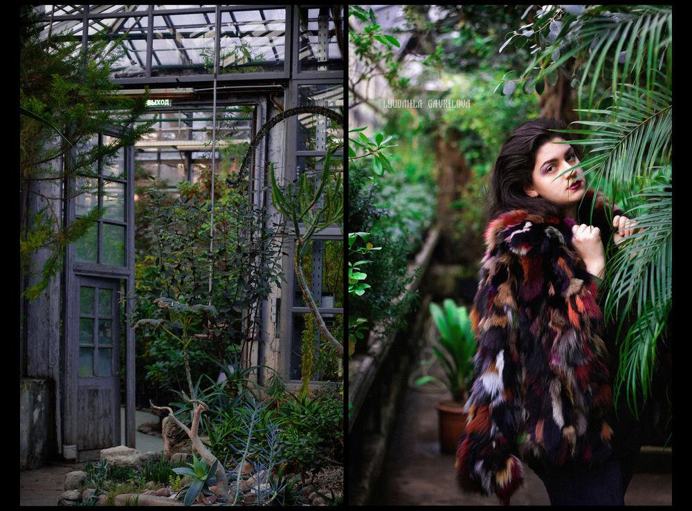 фотосессия, цветы, зелень, сад, бесплатно