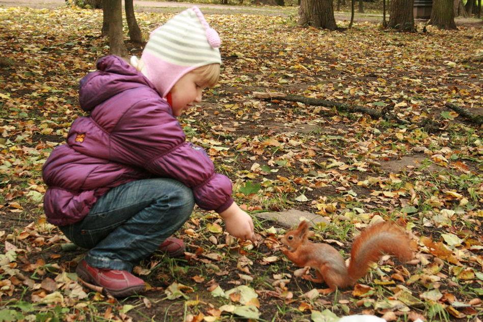 Картина башко осенью в парке учительница с детьми видят белку