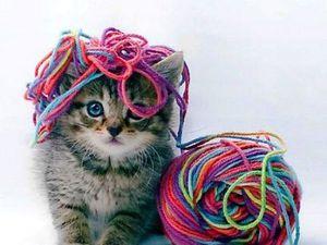 Котики делятся идеями: веселое вязание с Twinkie Chan. Ярмарка Мастеров - ручная работа, handmade.