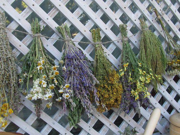 Примеры упаковки предлагаемых трав | Ярмарка Мастеров - ручная работа, handmade