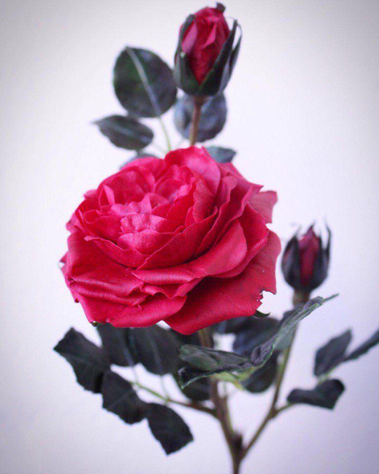 мк для начинающих, роза