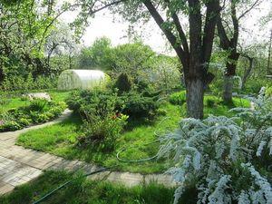 Один раз в год сады цветут,и это было недавно!. Ярмарка Мастеров - ручная работа, handmade.