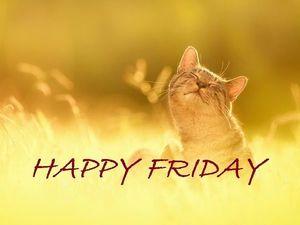 Happy Friday! 25% скидка на готовые броши!. Ярмарка Мастеров - ручная работа, handmade.