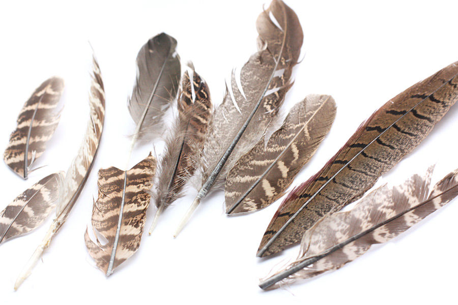 распродажа, перья