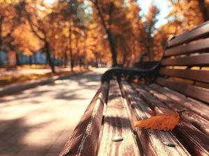 Уж небо осенью дышало. Ярмарка Мастеров - ручная работа, handmade.