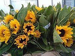Аукцион до субботы 21.04 на картины цветов!. Ярмарка Мастеров - ручная работа, handmade.