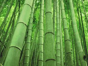 Пряжа из бамбука. Ярмарка Мастеров - ручная работа, handmade.