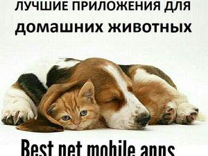 Полезные Приложения для Домашних Животных. Ярмарка Мастеров - ручная работа, handmade.