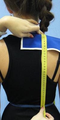 Длина талии спинки