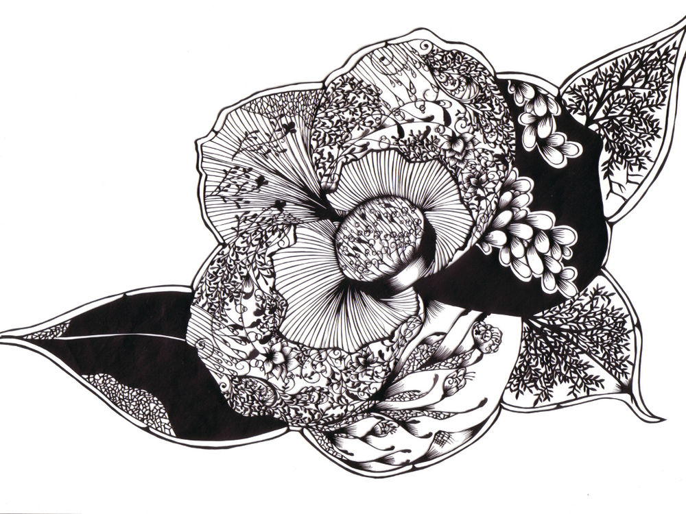 1 401 Бумажные кружева Хины Аоямы
