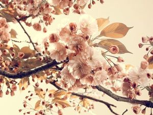 Весне Дорогу-аукцион на Винтажные Украшения. Ярмарка Мастеров - ручная работа, handmade.